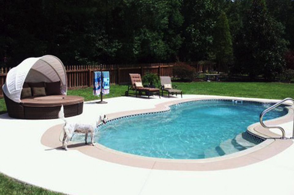 pool and lawn